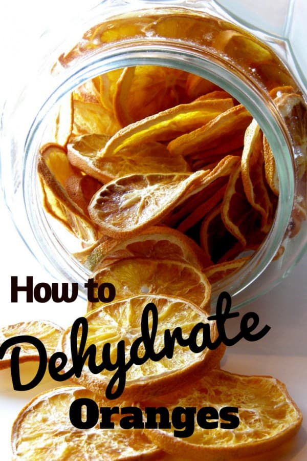 DIY Dried fruit - how to dehydrate fruit | https://chloesblog.bigmill.com/citrus-decorations-how-to-dry-orange-slicles/