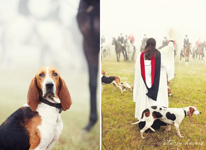Blessing of the Hounds-the Fox Hunt in Southern Pines, NC | www.chloesblog.bigmill.com/blessing-of-the-hounds-our-state