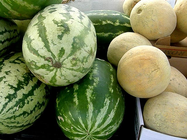 Rocky Hock watermelons Served at Big Mill BB near Greenville NC @BibMill | https://chloesblog.bigmill.com/fruit-stands-and-pick-up-trucks