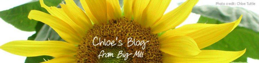 Chloe's Blog header image