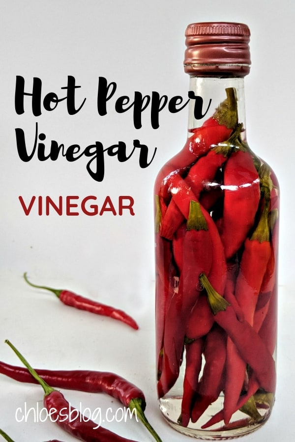 Hot Pepper Vinegar is a Must-Have on any southern table. Cheap, easy-to-make recipe. Great gift idea for any chefs you love. Buy peppers at the farmer\'s market or even the grocery store.