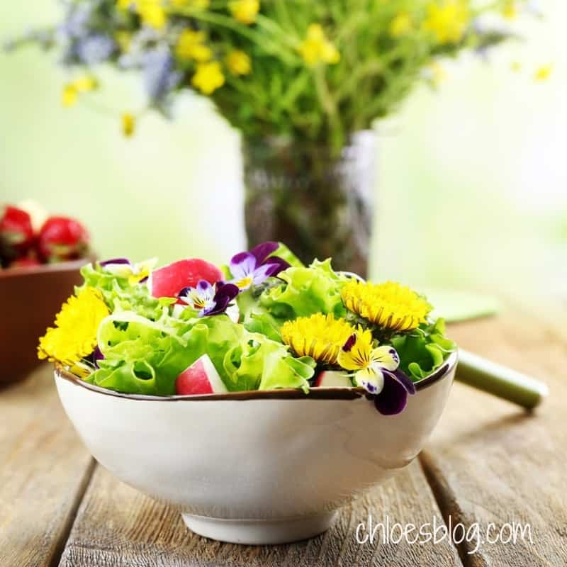 photo of Salad with edible flower at Big Mill B&B