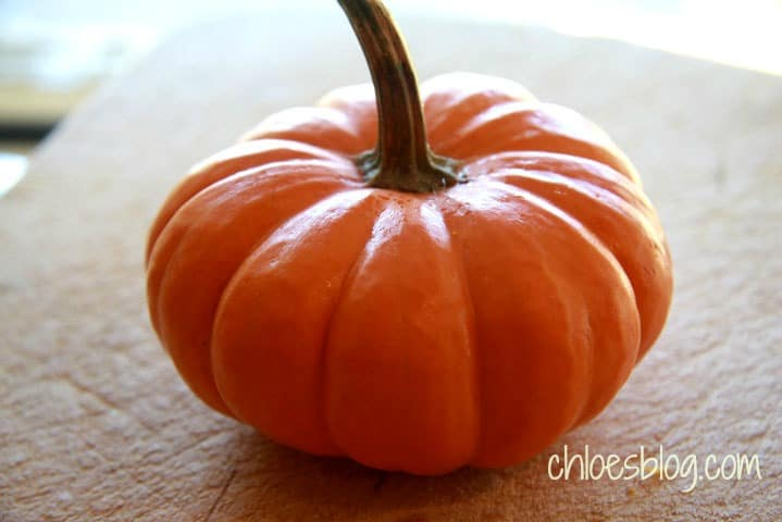 Pumpkins for the holidays at Big Mill Bed and Breakfast, in Williamston, North Carolina | chloesblog.bigmill.com