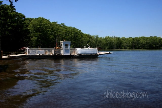 Cashie River near Windsor, NC | chloesblog.com