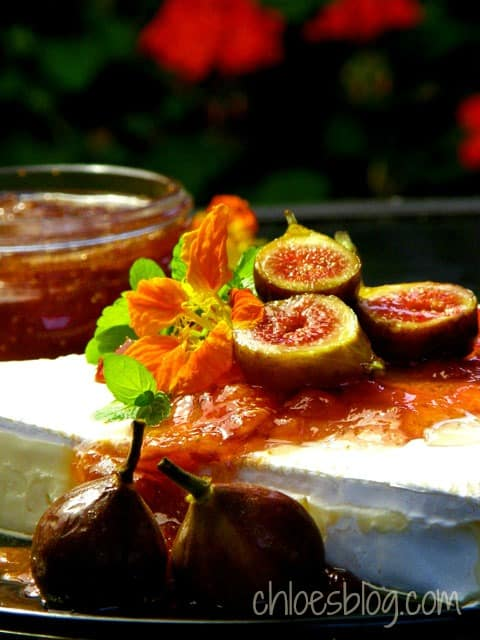 Figs and Brie appetizer | chloesblog.bigmill.com