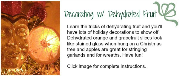 Dehydrated orange and grapefruit slices look like stained glass when hung on a Christmas tree and they make a lovely hostess gift. chloesblog.bigmill.com/citrus-decorations-how-to-dry-orange-slicles