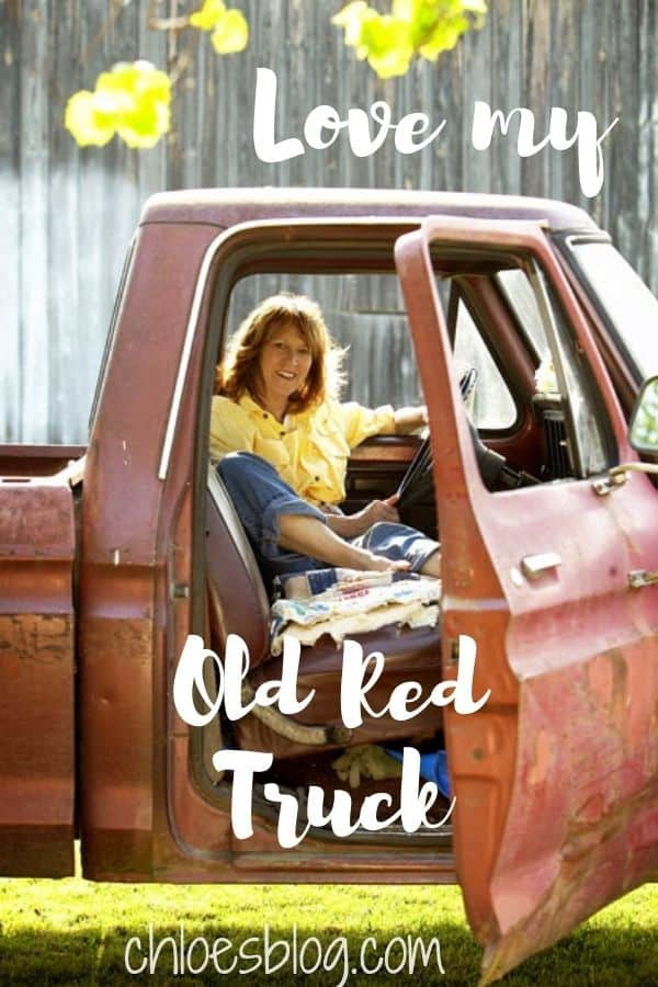 Old Red Truck - Mascot of Big Mill B&B Extended Stay