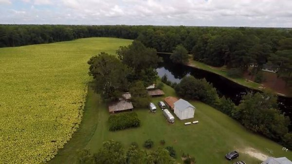 Aerial view of farm and pond in eastern NC
