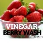 Vinegar-berry-Wash-Recipe-Chloes-Blog