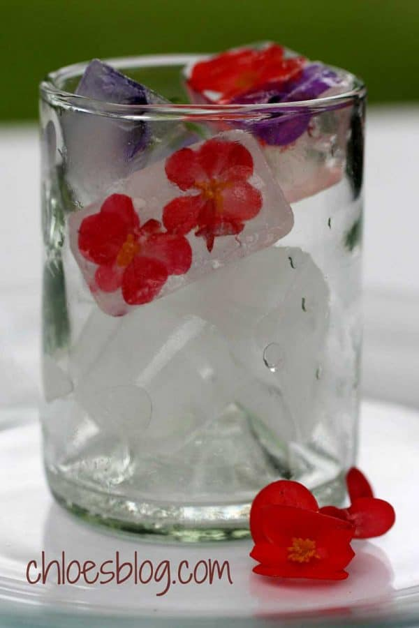 You can easily perk up any cold drink by freezing edible flowers in ice cube trays
