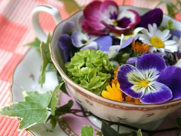 Edible Flowers add a pop to any salad. Learn about edible flowers all around you on North Carolina's Big Mill Bed and Breakfast blog